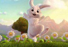 قصه خرگوش کنجکاو و حرف گوش نکن!