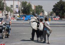 ۶ هزار کودک در انجمن حامیان کودکان کار و خیابان با سواد شدند