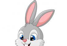 قصه خرگوش باهوش