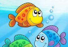 قصه ماهی رنگین کمان