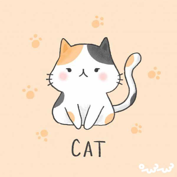 قصه گربه ناراضی