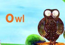 کارتون ABC Kids | آموزش حروف الفبا انگلیسی (O)