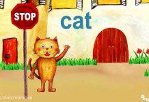 کارتون ABC kids - Alphabet Letter C