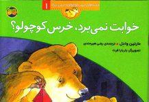 معرفی کتاب خوابت نمی برد خرس کوچولو