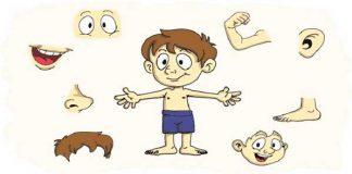 قصه کودکانه درباره اعضای بدن ؛ آموزش اعضای بدن