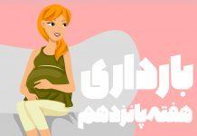 هفته پانزدهم بارداری