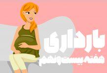 هفته بیست و نهم بارداری