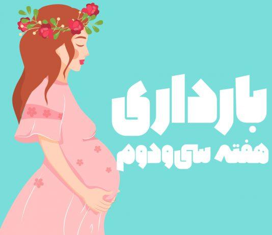 هفته سی و دوم بارداری
