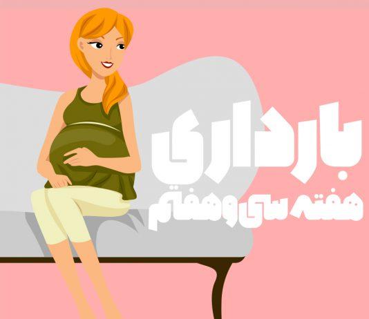 هفته سی و هفتم بارداری