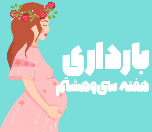 هفته سی و هشتم بارداری