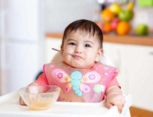 طرز تهیه دو پوره جدید برای نوزاد بالای شش ماه
