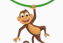 چگونه میمون پلنگ را از پای در آورد