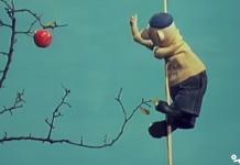 کارتون پت و مت - چیدن سیب