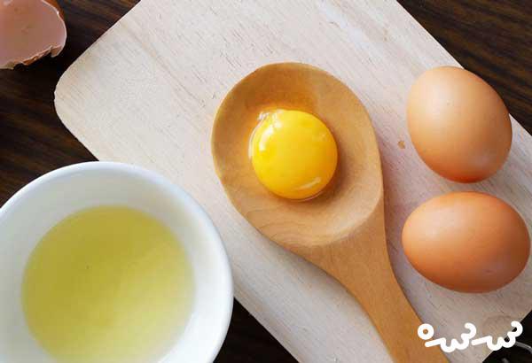 مصرف تخم مرغ در دوران بارداری